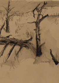 Zeichnung-2