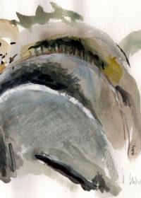 bergland-1-2004