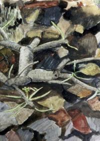 lanzarote-lavafeld-aquarell-1999
