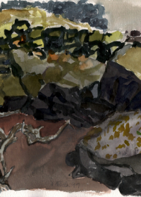 lanzarote-lavafeld-mit-weinstock-aquarell-1999