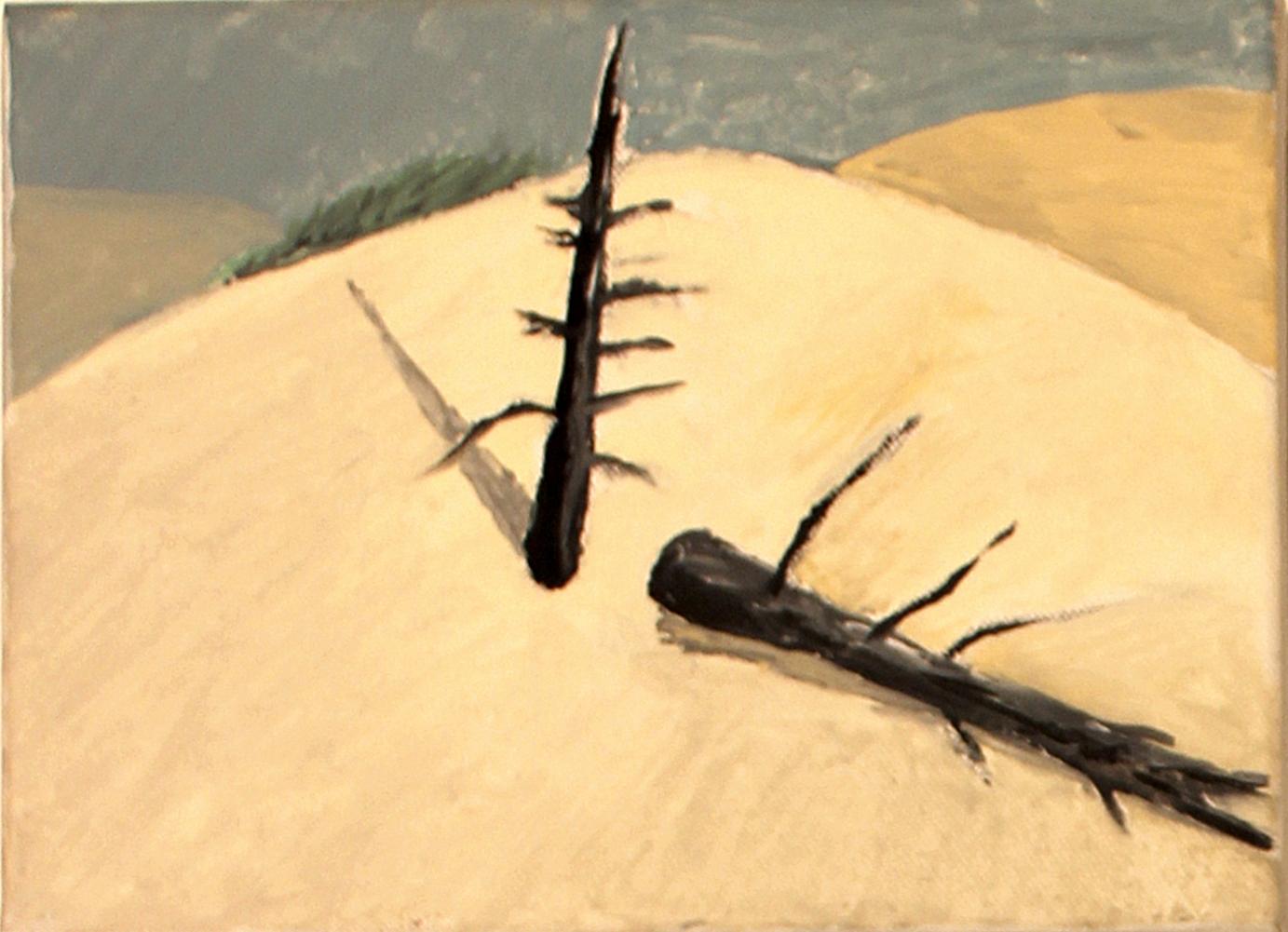 Düne-6 Ölbild