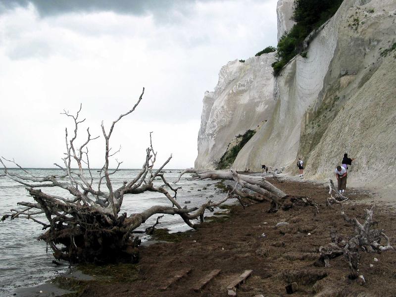 moens-klint-22