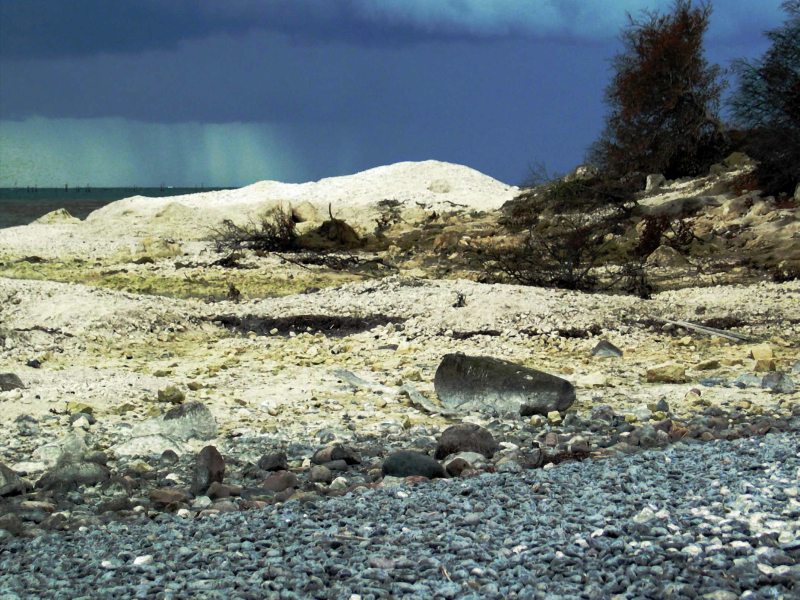 moens-klint-50