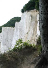 Moens Klint - Steilküste