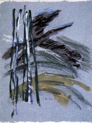 Nachtvogel