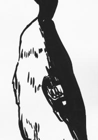 vogel-7-pinselzeichnung
