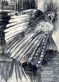 vogel-kohlezeichnung-sw