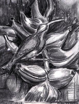 vogel-graphitstift